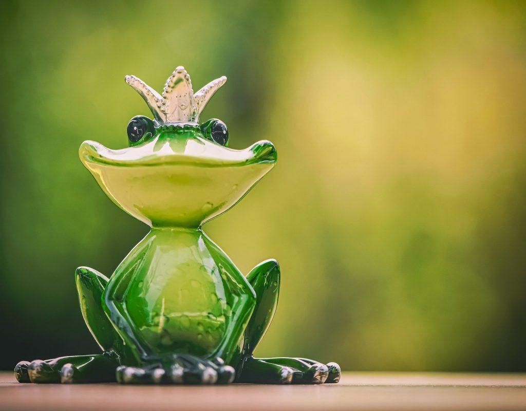 frog-5073324_1920